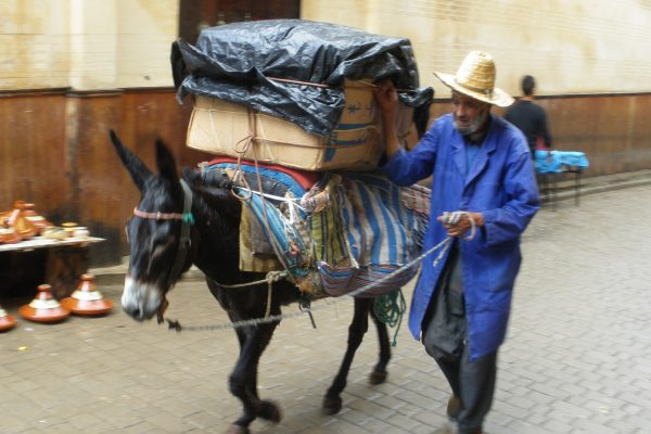 getting products in and out of the souks in old medina. no cars allowed